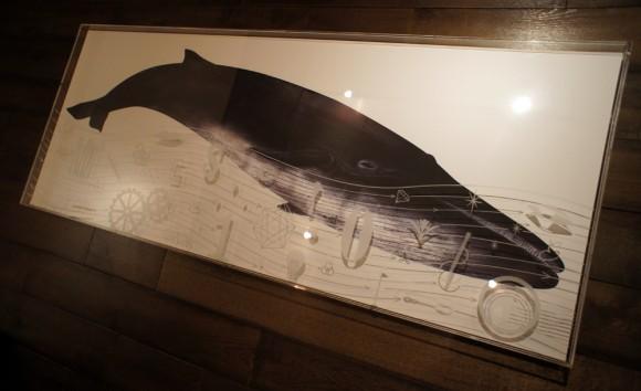 シロナガスクジラ, 鯨, whale